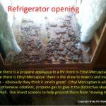 RV Refrigerator Mud Dauber Insect Damage