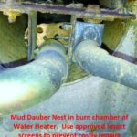 RV Water Heater Mud Dauber Insect Damage